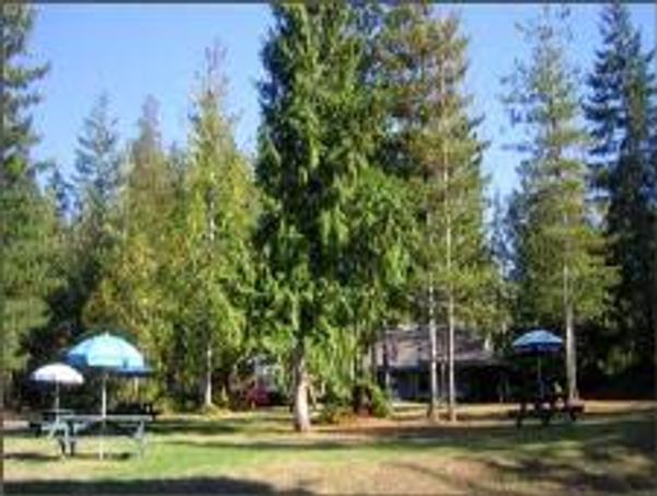Bayside Campground & RV Park
