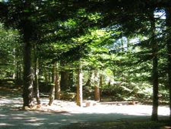 Malahat Mountain Meadows RV Resort
