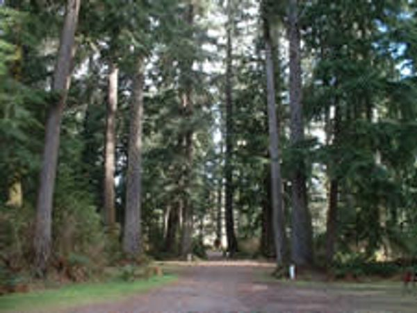 Quatse River Campground