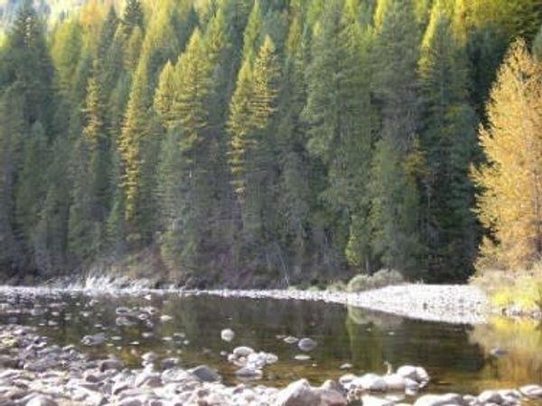 Rocking River Campground