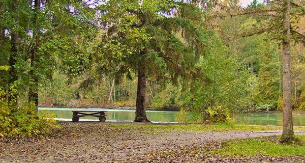 Bailey Bridge Campsite & Cabins